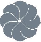 CMS favicon logo